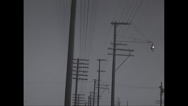 ms tu power lines against sky / united states - linea telefonica video stock e b–roll