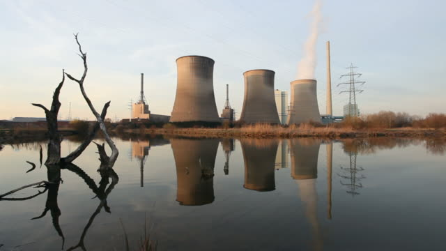 Power plant with dead trees