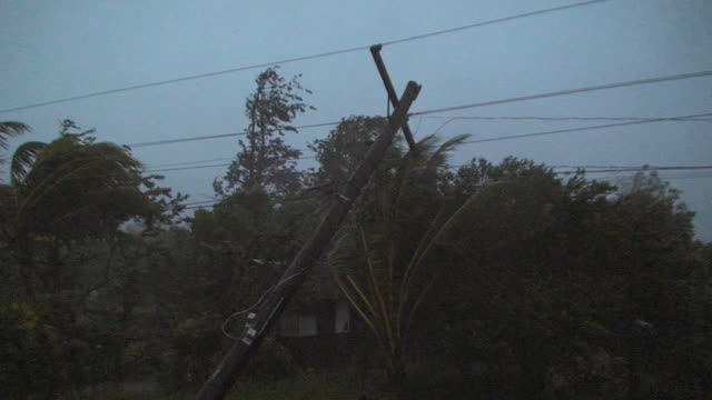 power pole leaning dangerously in strong winds, 3rd october 2009, near pamplona, typhoon parma - inarcare la schiena video stock e b–roll