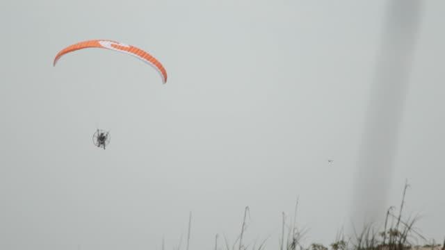 powered paragliding on beach - オオハマガヤ属点の映像素材/bロール