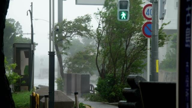 powerful eyewall wind and rain from typhoon lingling lashes miyakojima in japan - typhoon stock videos & royalty-free footage