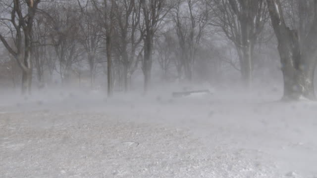 powerful gales create ground blizzard conditions - scott mcpartland stock videos & royalty-free footage