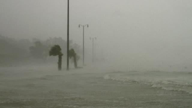 vídeos y material grabado en eventos de stock de powerful hurricane storm surge flooding highway. - huracán