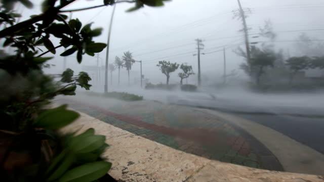 powerful hurricane winds and rain lash camera mounted in street as typhoon maria hits japan - typhoon stock videos & royalty-free footage