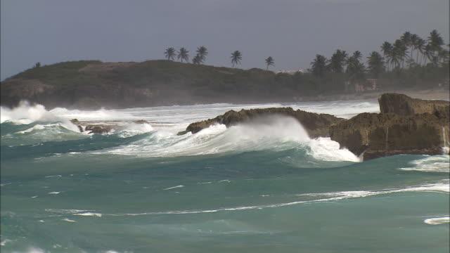 vidéos et rushes de powerful waves crash against rocks off the coastline of puerto rico. - mer des caraïbes