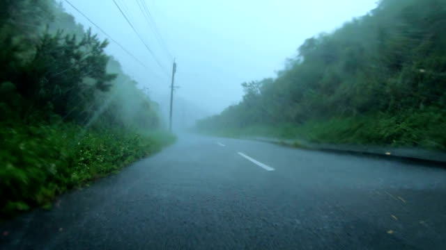 powerful wind and rain from typhoon haishen lash amami oshima, japan - tropical climate stock videos & royalty-free footage