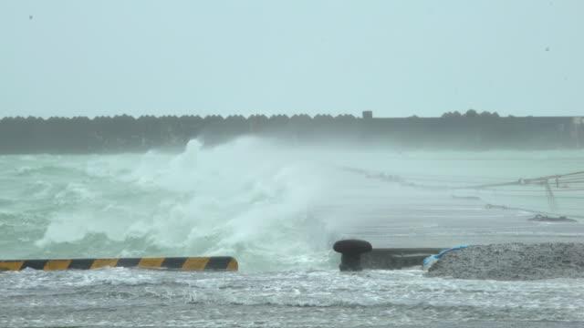 powerful wind and rain from typhoon haishen lash amami oshima, japan - gezeiten stock-videos und b-roll-filmmaterial