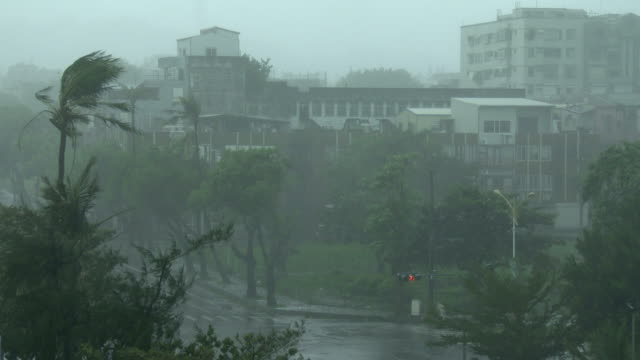 powerful wind and rain from typhoon megi lash hualien city in taiwan on 27th september 2016 - メギ点の映像素材/bロール