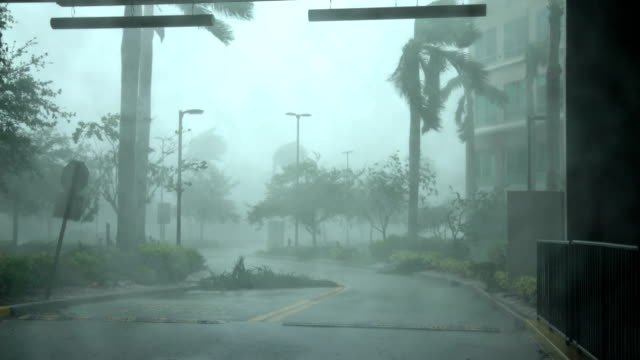 stockvideo's en b-roll-footage met powerful wind and rain lash naples florida as hurricane irma makes landfall - florida verenigde staten
