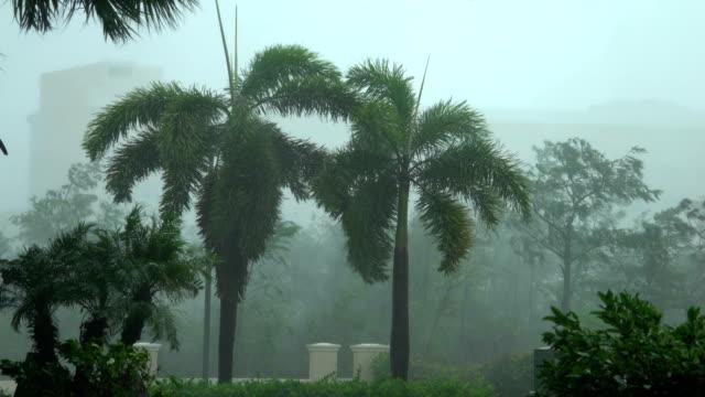 Powerful wind and rain lash Naples Florida as hurricane Irma makes landfall