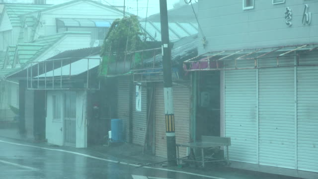 Powerful wind and rain sweep across town as typhoon Jebi hits central Japan