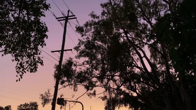 stockvideo's en b-roll-footage met powerlines bij zonsondergang - stroomtransformator