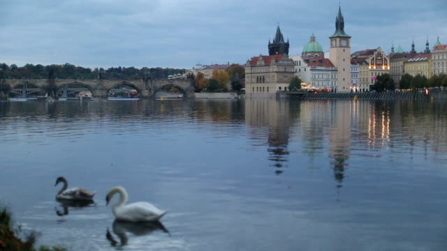 prague charles bridge over vltava river - river vltava stock videos and b-roll footage