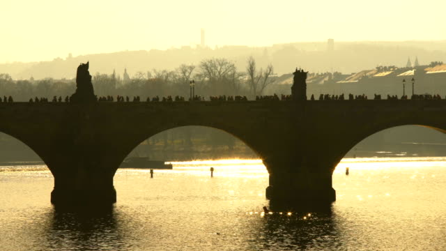 prague with charles bridge - charles bridge stock videos & royalty-free footage