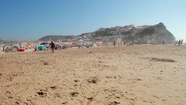 vídeos de stock e filmes b-roll de praia - banco de areia