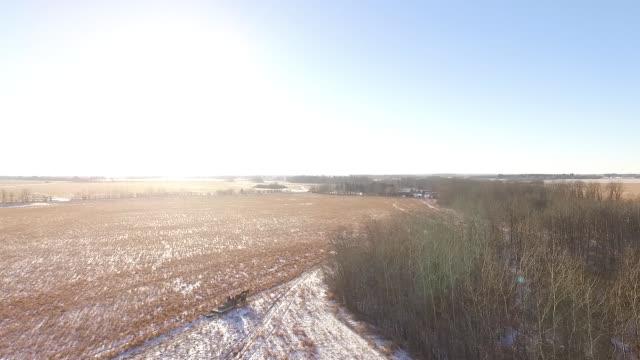 Prairie Winter Horse Sleigh Ride
