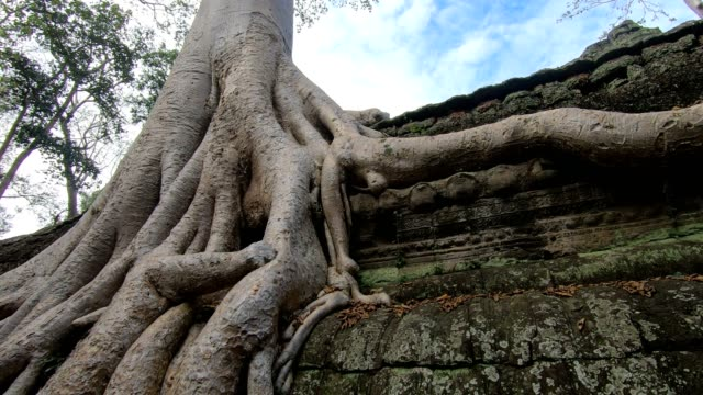 prasat preah khan temple, in siem reap, cambodia - ruined stock videos & royalty-free footage
