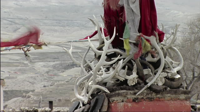 MS Prayer flags flapping by antlers / Lo Manthang, Mustang, Nepal