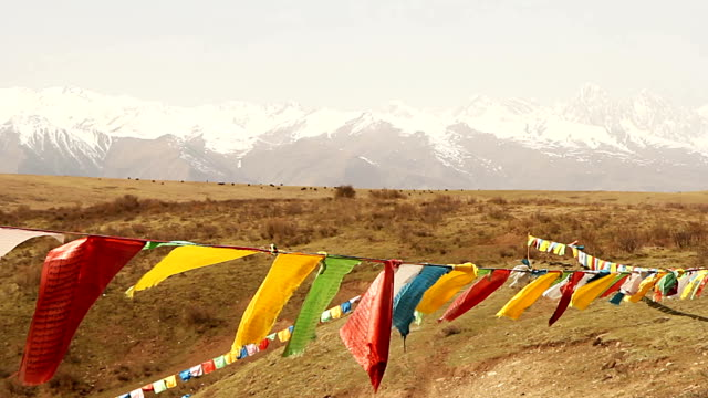 prayer flags. - bhutan stock videos & royalty-free footage