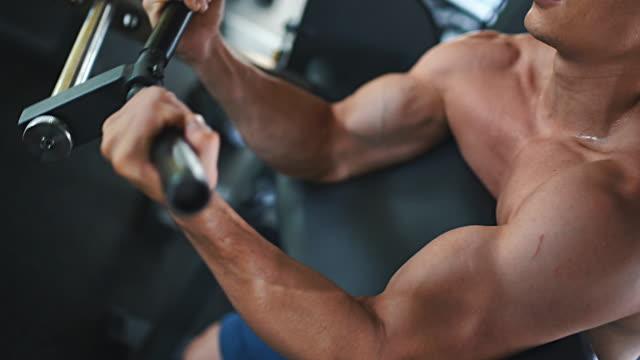 vídeos de stock, filmes e b-roll de pregador bicep curl exercício. - musculação