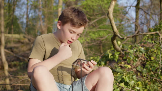 stockvideo's en b-roll-footage met preadolescent 12 years old cute maverick boy gaming outside in green nature with mobile smart phone. - 12 13 jaar