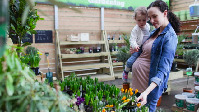 stockvideo's en b-roll-footage met pregnant mother with daughter at garden centre - shopping centre