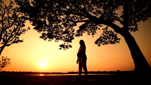 pregnant woman silhouette yoga is sunset - animal abdomen stock videos and b-roll footage