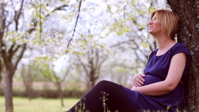 vídeos de stock, filmes e b-roll de mulher grávida, sentado sob uma árvore de flor de cerejeira - sentando