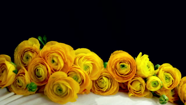 pregnant woman sitting with yellow roses - navel stock videos & royalty-free footage