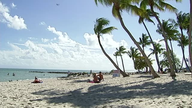 pregnant women being urged by public health england not to travel to florida due to zika risk t31031213 / tx florida florida keys wide shot white... - swimming costume stock videos and b-roll footage