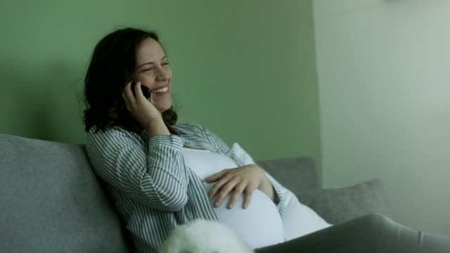 Pregnant young woman with dog sitting on sofa and talking on the phone at home