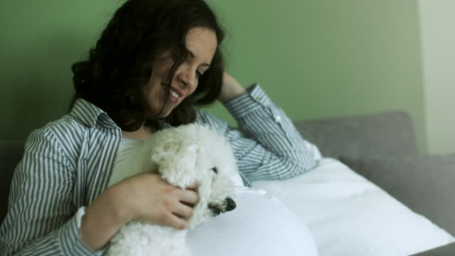 Pregnant young woman with dog sitting on sofa at home