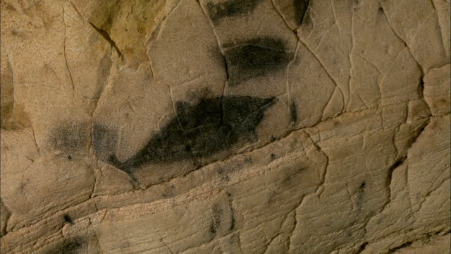 Prehistoric mural of tuna inside a cave in Levanzo Island, west of Sicily, Italy
