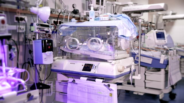 premature infants in incubators under ultraviolet light - nursery bedroom stock videos & royalty-free footage