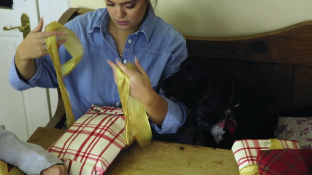 preparing christmas gifts - dog knotted in woman stock videos & royalty-free footage