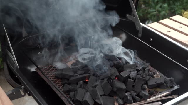 preparing dinner on a grill. summer evening - metal grate stock videos & royalty-free footage