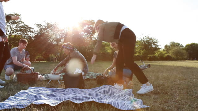 preparing everything for a picnic and barbecue - public park stock-videos und b-roll-filmmaterial