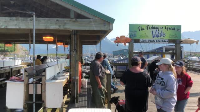 stockvideo's en b-roll-footage met preparing fish for customer in valdez, alaska - alaska verenigde staten