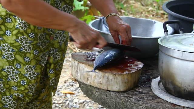 vídeos de stock e filmes b-roll de preparação de peixe - grupo mediano de animales