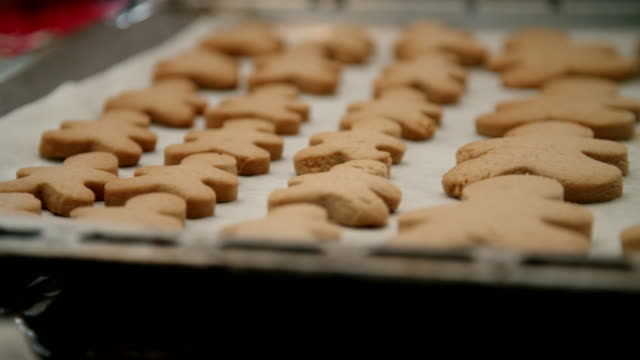 preparing gingerbread cookies in domestic kitchen - cookie stock videos and b-roll footage