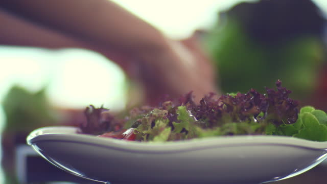 preparing green salad - salad stock videos & royalty-free footage