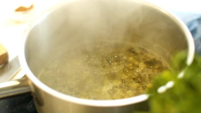 vídeos de stock e filmes b-roll de preparing mushroom meal, slo mo - marina