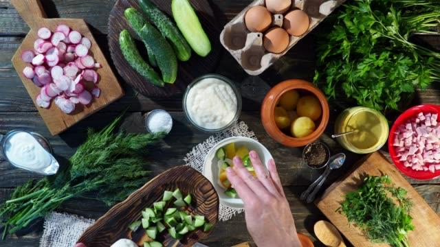 vídeos de stock e filmes b-roll de preparing okroshka - ingrediente
