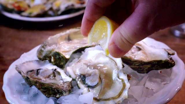 preparing oyster dish - seafood stock videos and b-roll footage