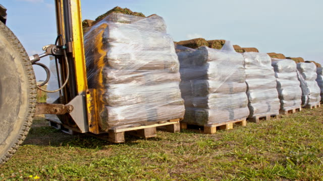 MS Preparing pallets of rolled sod for transport