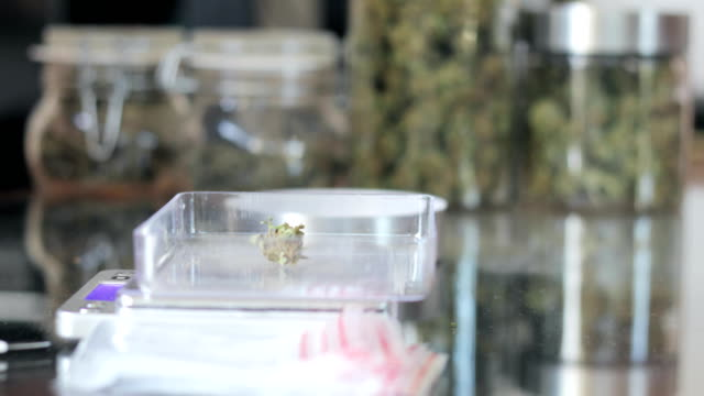 Plastiktüten mit Cannabis-Buden vorbereiten
