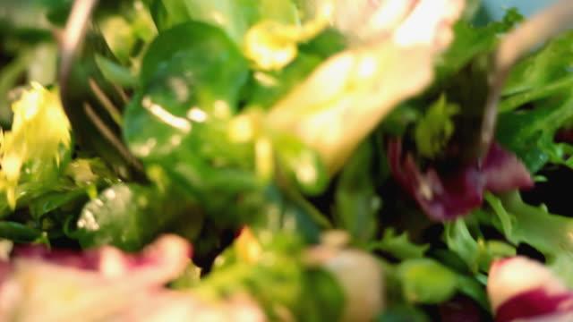 preparing salad - savoy cabbage stock videos & royalty-free footage