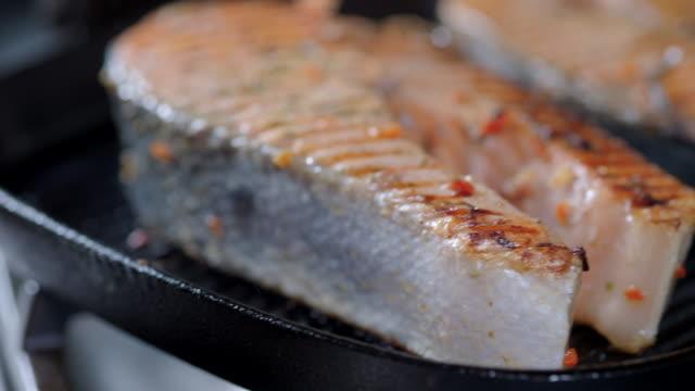 vídeos de stock e filmes b-roll de preparing salmon - salmão peixe