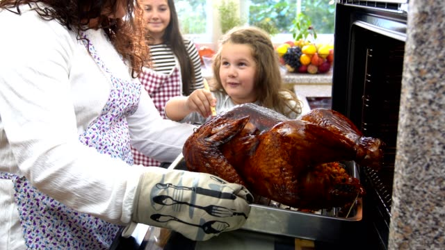 preparing turkey for thanksgiving dinner - oven mitt stock videos and b-roll footage