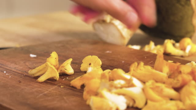 preparing wild mushrooms for cooking - chanterelle stock videos & royalty-free footage
